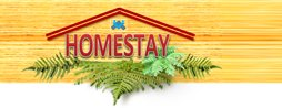 Homestay & Accomodation